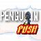 play Penguin Push